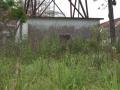 congo juillet 2007 107